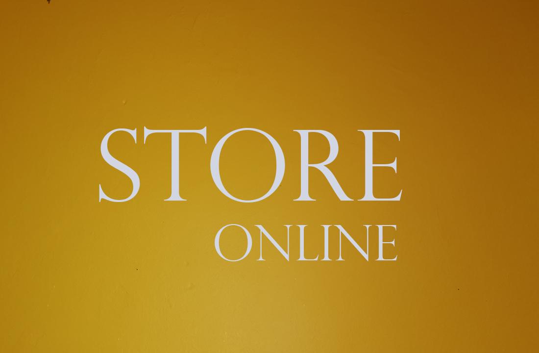 Store online 1100x720 2